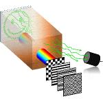 TRAFIX Microscopy Image