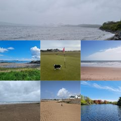 Images taken by the team on their walks